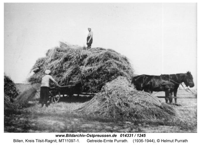 Billen, Getreide-Ernte Purrath