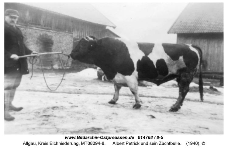 Allgau, Albert Petrick und sein Zuchtbulle