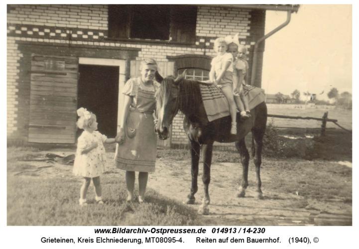 Grieteinen, Reiten auf dem Bauernhof