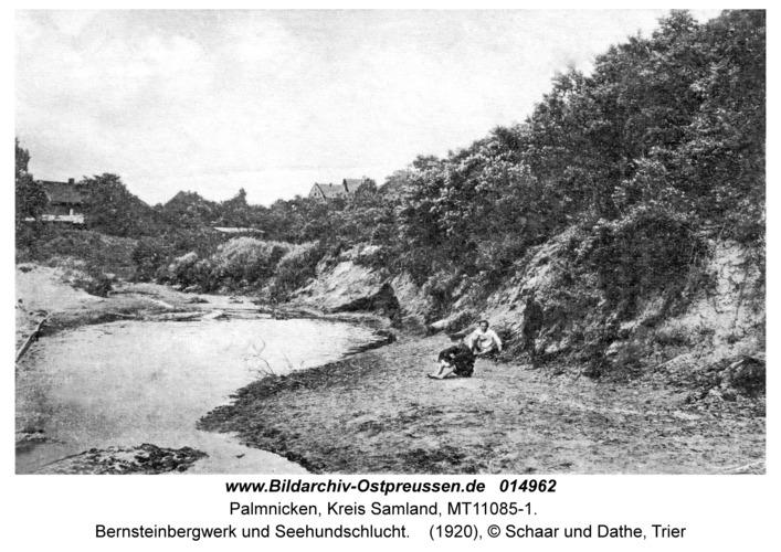 Palmnicken, Bernsteinbergwerk und Seehundschlucht
