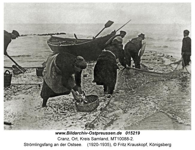 Cranz, Strömlingsfang an der Ostsee