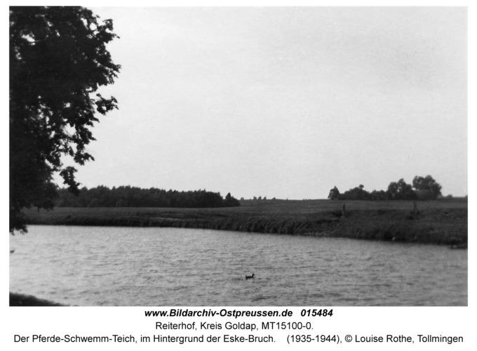 Reiterhof, Der Pferde-Schwemm-Teich, im Hintergrund der Eske-Bruch