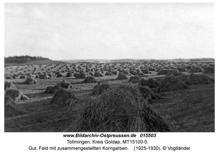 Tollmingen, Gut, Feld mit zusammengestellten Korngarben