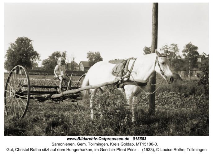 Reiterhof, Gut, Christel Rothe sitzt auf dem Hungerhaken, im Geschirr Pferd Prinz