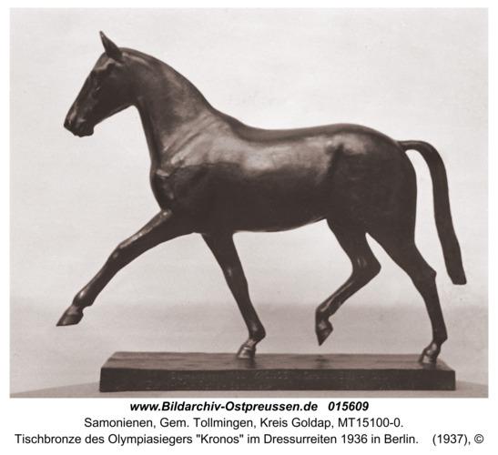 """Reiterhof, Olympiasieger """"Kronos"""" im Dressurreiten 1936 in Berlin"""
