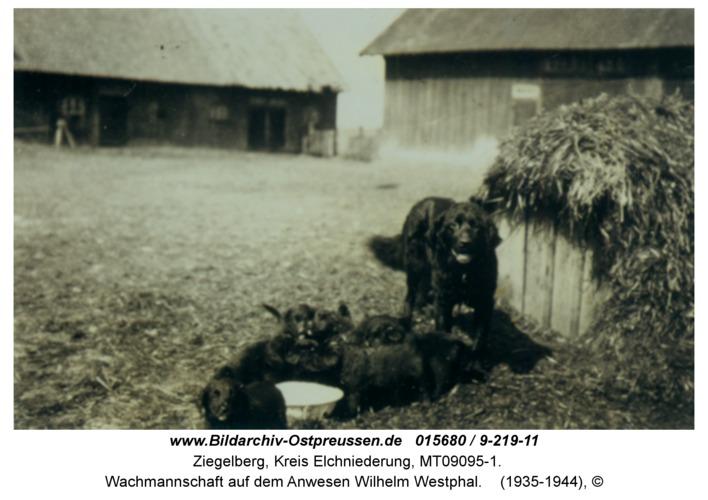 Ziegelberg, Wachmannschaft auf dem Anwesen Wilhelm Westphal