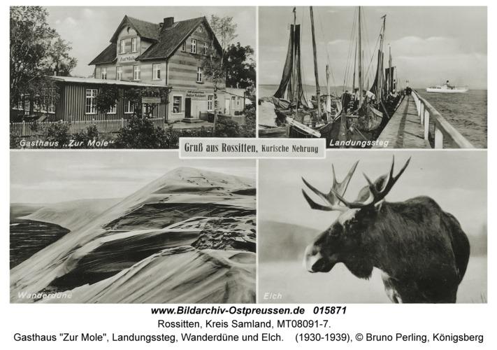"""Rossitten Kr. Samland, Gasthaus """"Zur Mole"""", Landungssteg, Wanderdüne und Elch"""