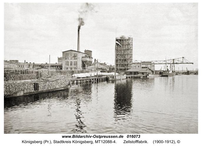Königsberg, Zellstofffabrik