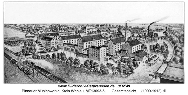 Pinnauer Mühlenwerke, Gesamtansicht