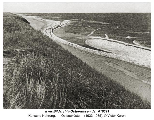 Kurische Nehrung, Ostseeküste