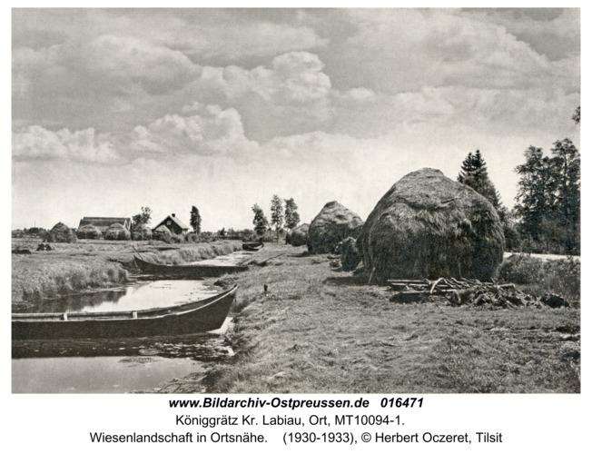 Königgrätz Kr. Labiau, Wiesenlandschaft in Ortsnähe