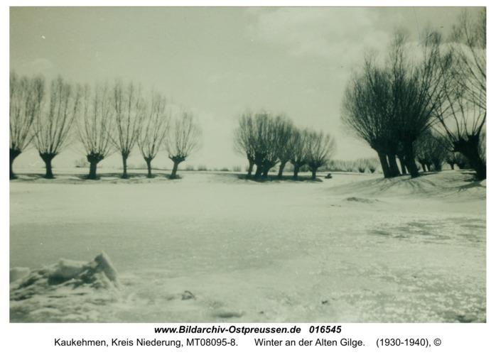Kuckerneese, Winter an der Alten Gilge