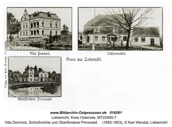 Liebemühl, Villa Domnick, Schloßmühle und Oberförsterei Prinzwald
