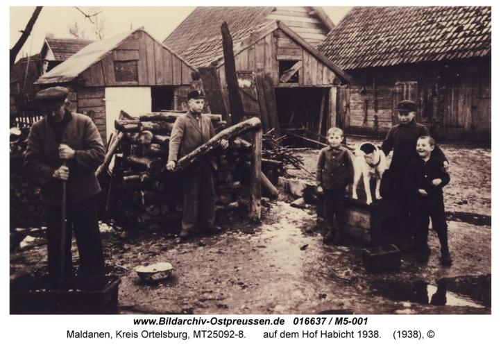 Maldanen, auf dem Hof Habicht 1938