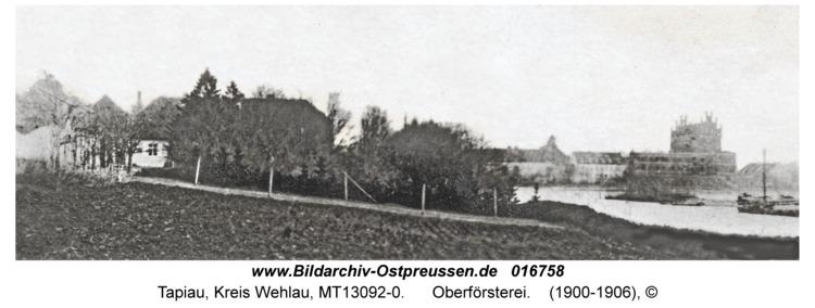 Tapiau, Oberförsterei