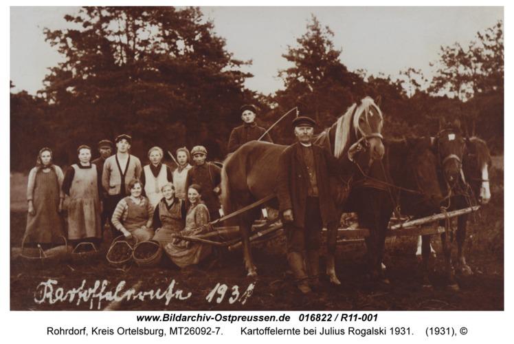 Rohrdorf, Kartoffelernte bei Julius Rogalski 1931