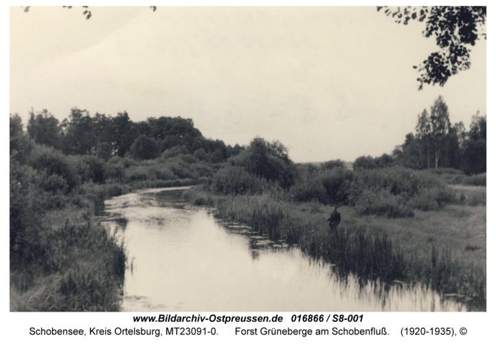 Schobensee, Forst Grüneberge am Schobenfluß