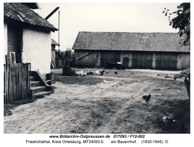 Friedrichsthal, ein Bauernhof