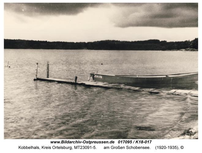 Kobbelhals, am Großen Schobensee