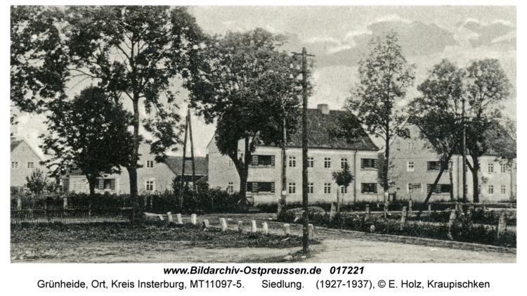 Grünheide Kr. Insterburg, Siedlung
