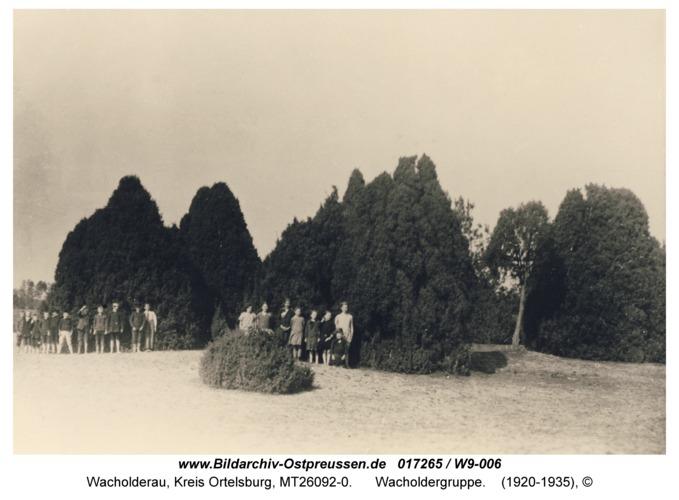 Wacholderau, Wacholdergruppe