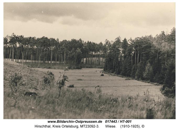 Hirschthal, Wiese