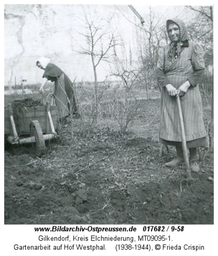 Gilkendorf, Gartenarbeit auf Hof Westphal