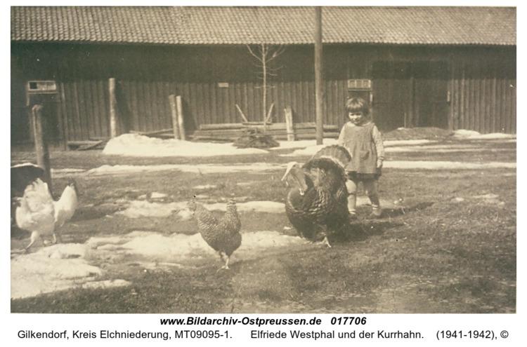 Gilkendorf, Elfriede Westphal und der Kurrhahn