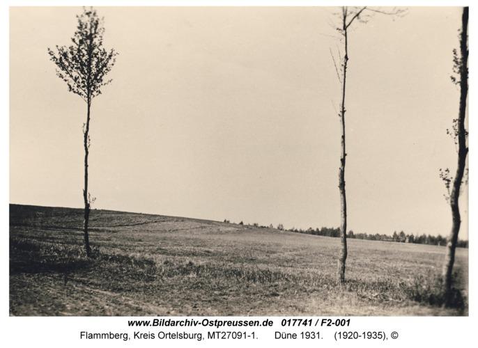 Flammberg, Düne 1931