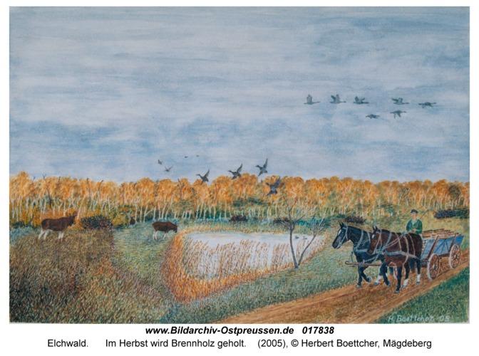 Elchwald, Im Herbst wird Brennholz geholt