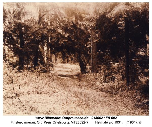 Finsterdamerau, Heimatwald 1931