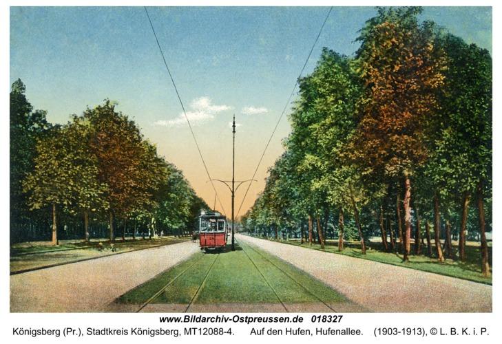 Königsberg, Auf den Hufen, Hufenallee