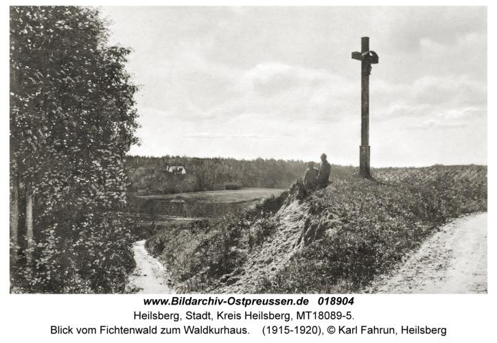 Heilsberg, Blick vom Fichtenwald zum Waldkurhaus