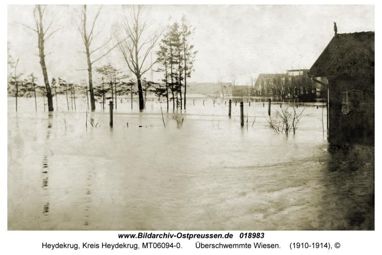 Heydekrug, Überschwemmte Wiesen