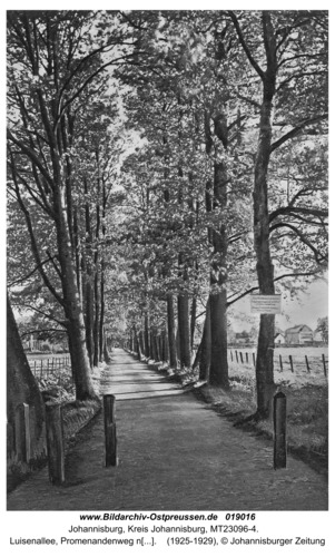 Johannisburg, Luisenallee, Promenandenweg nach Johannishöhe