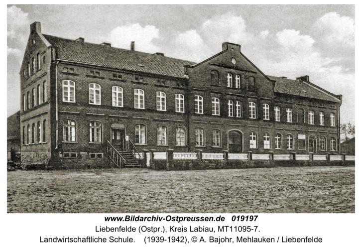 Liebenfelde, Landwirtschaftliche Schule