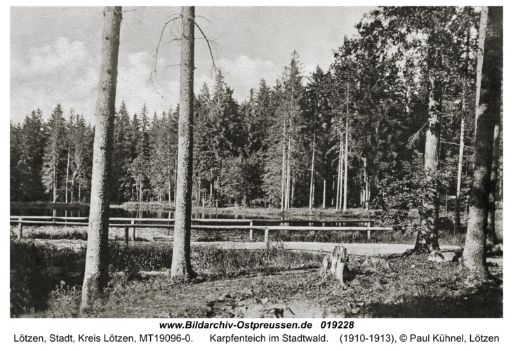 Lötzen, Karpfenteich im Stadtwald