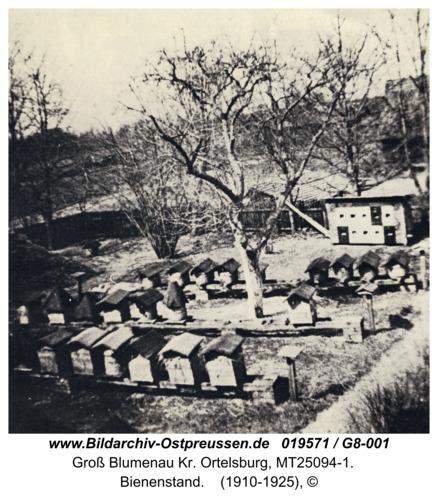 Groß Blumenau Kr. Ortelsburg, Bienenstand