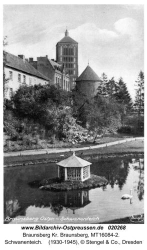 Braunsberg, Schwanenteich