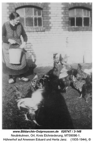 Neulinkuhnen, Hühnerhof auf Anwesen Eduard und Herta Janz