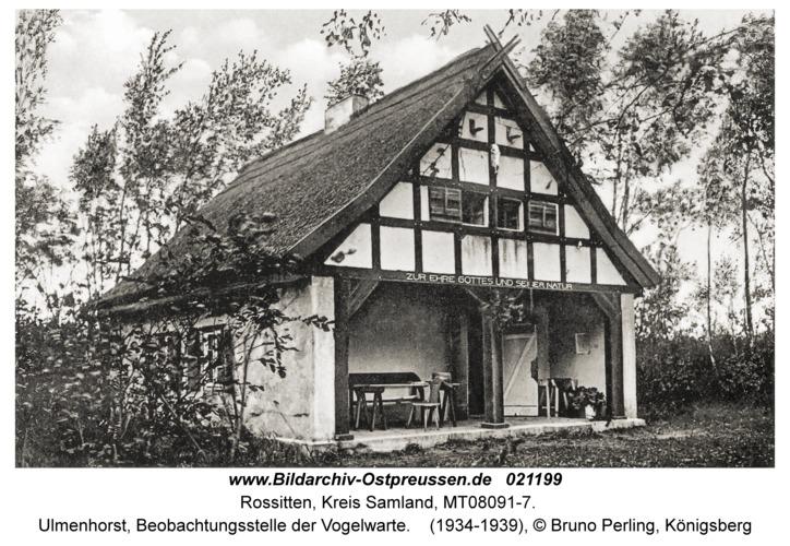 Rossitten Kr. Samland, Ulmenhorst, Beobachtungsstelle der Vogelwarte