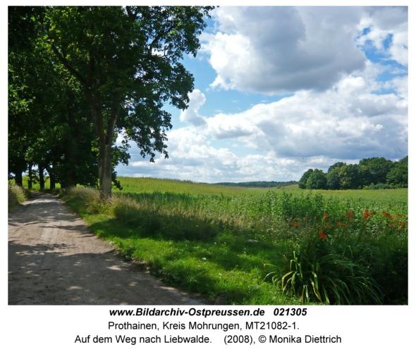 Prothainen, Auf dem Weg nach Liebwalde