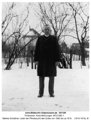 Prothainen, Mathes Schattner, Leiter der Pferdezucht des Gutes von 1892 bis ca.1919