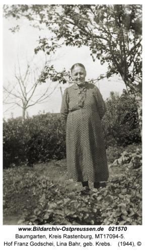 Baumgarten Kr. Rastenburg, Hof Franz Godschei, Lina Bahr, geb. Krebs