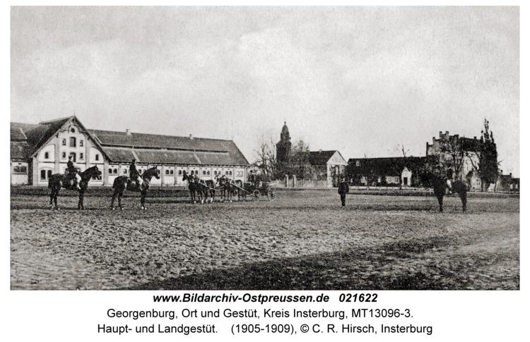 Georgenburg, Ort und Gestüt, Haupt- und Landgestüt