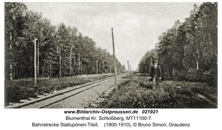 Blumenthal Kr. Schloßberg, Bahnstrecke Stallupönen-Tilsit