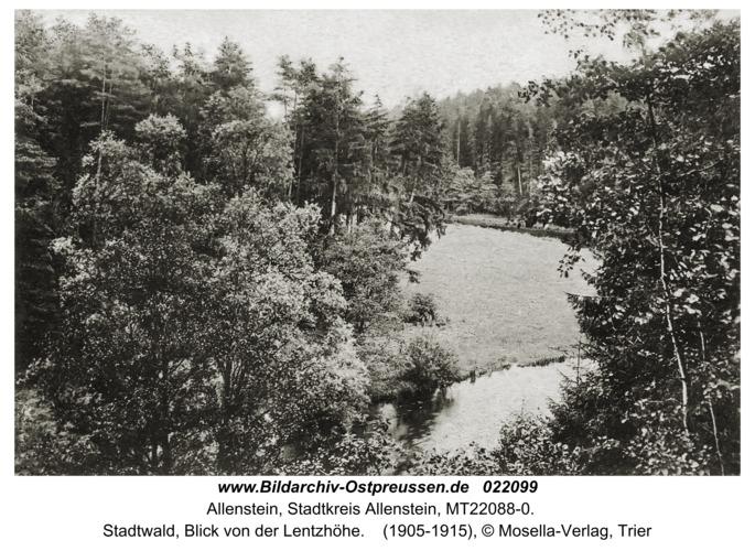 Allenstein, Stadtwald, Blick von der Lentzhöhe