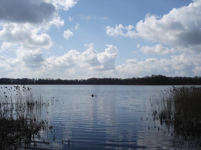 Arklitter See bei Molteinen