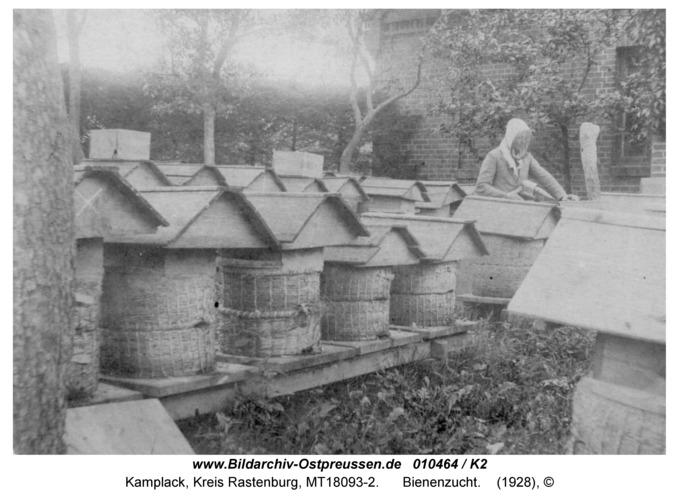 Kamplack, Bienenzucht