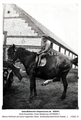 Benno Kröhnert auf einer tragenden Stute. Großheidenstein/Groß Heidenstein